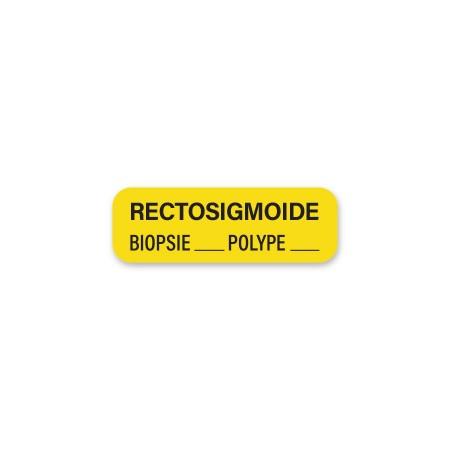 RECTOSIGMOIDE