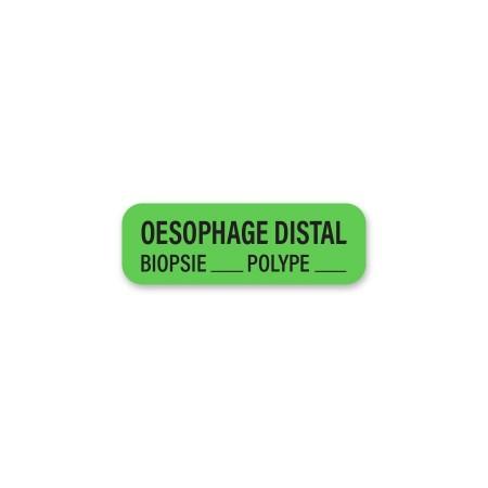 OESOPHAGE DISTAL