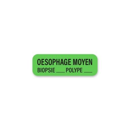 OESOPHAGE MOYEN